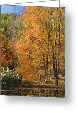 Autumn Tranquility 4 Greeting Card