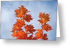 Autumn Tree Leaves Art Prints Blue Sky White Clouds Greeting Card