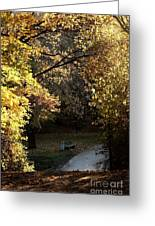 Autumn Trees 3 Greeting Card