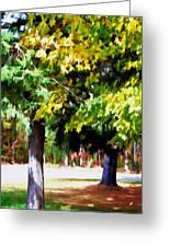 Autumn Trees 7 Greeting Card