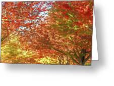 Autumn Trees Digital Watercolor Greeting Card