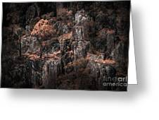 Autumn Trees Growing On Mountain Rocks Greeting Card