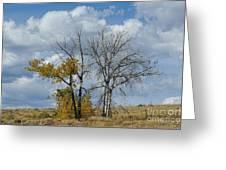 Autumn Trees II Greeting Card