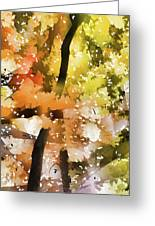 Autumn Trees In The Fog Greeting Card