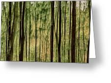 Autumn Trees, Scottish Borders Greeting Card