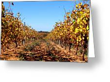Autumn Vines Greeting Card by K McCoy