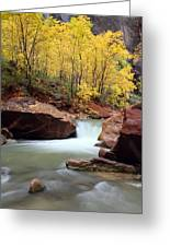 Autumn Virgin River In Zion Greeting Card