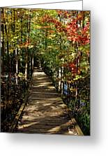 Autumn Walk Greeting Card