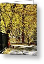 Autumn Walkway Greeting Card