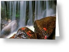 Autumn Waterfall Greeting Card