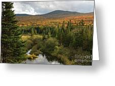 Autumn - White Mountains New Hampshire Greeting Card