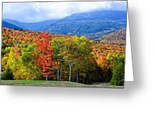 Autumn White Mountains Nh Greeting Card