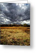 Autumn Winds Blow Greeting Card