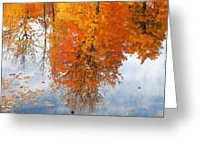Autumn With Colorful Foliage And Water Reflection 19 Greeting Card