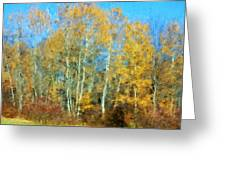 Autumn Woodlot Greeting Card