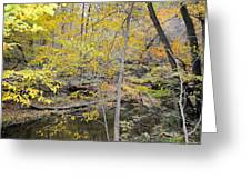 Autumn Woods 2 Greeting Card