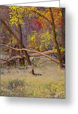 Autumn Yearling Greeting Card