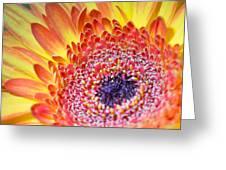 Autumn Yellow Flower Greeting Card