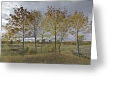 Autumnal Beauty Greeting Card