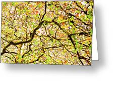 Autumnal Colours Greeting Card
