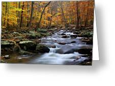 Autumnal Face Greeting Card