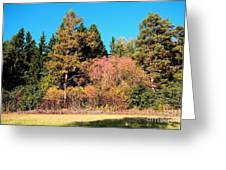 Autumnal Landscape Greeting Card