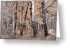 Autumnal Lightness Greeting Card