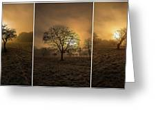Autumnal Triptych. Greeting Card
