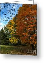 Autumn's Artwork Greeting Card