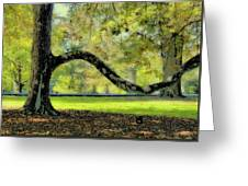 Autumns Bench Greeting Card