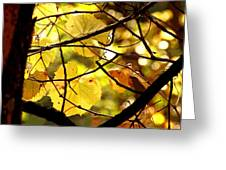 Autumn's Revelry Greeting Card