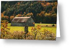 Autumns Colors Greeting Card by Sandra Cunningham