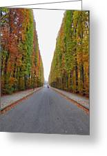 Autumn's Colours Greeting Card