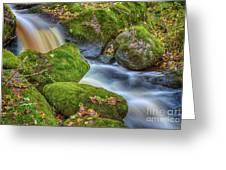 Autumn's Creek 2 Greeting Card