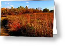 Autumns Field Greeting Card