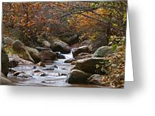 Autumns Flow Greeting Card