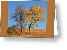 Autumn's Gold - No 1 Greeting Card