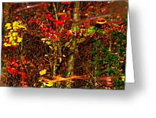Autumns Looking Glass 2 Greeting Card