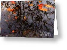 Autumns Looking Glass 3 Greeting Card
