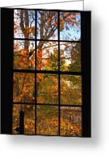 Autumn's Palette Greeting Card by Joann Vitali