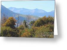 Autumns Telltale Signs  Greeting Card