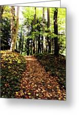 Autumn's Trail Greeting Card