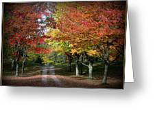 Autumn's Walk Greeting Card by Trina Prenzi
