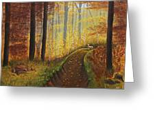 Autumn's Wooded Riverbed Greeting Card