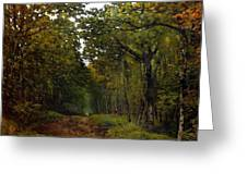 Avenue Of Chestnut Trees Greeting Card