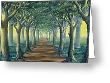 Avenue Of Enlightenment Greeting Card
