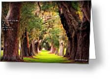 Avenue Of Oaks 2 I Am The Way Greeting Card
