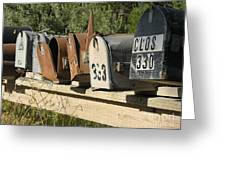 Awaiting Mail  Greeting Card