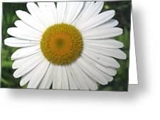 Awake Greeting Card