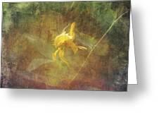 Awaken The Dreamer Greeting Card